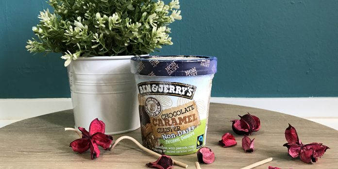 Ben and Jerry's Vegan Ice Cream Cover
